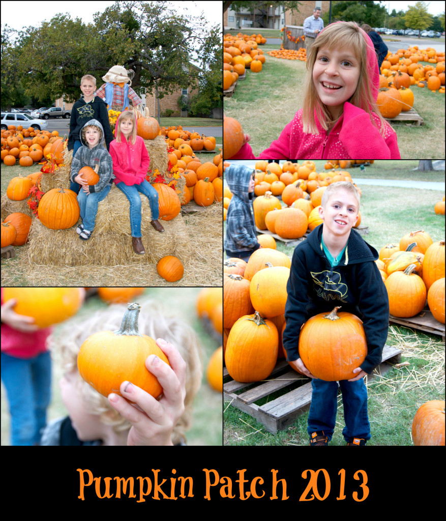 Pumpkin Masters Collage 2